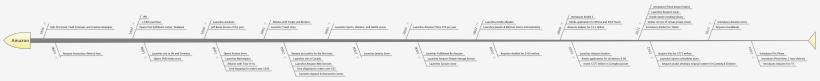 amazon-timeline